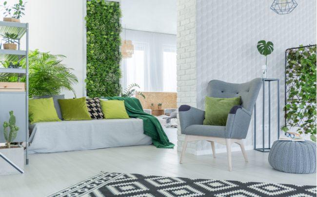 plantas-na-decoracao-da-casa-sepac