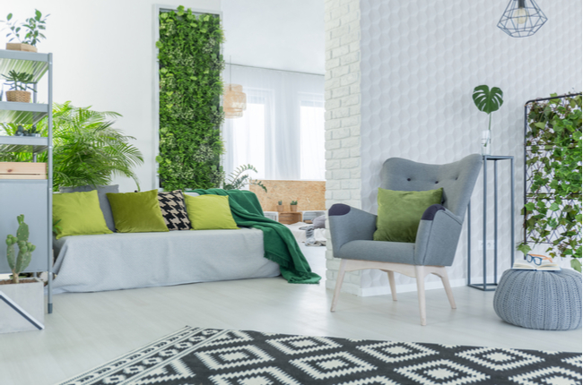 Plantas em casa: como tornar o ambiente mais saudável e acolhedor