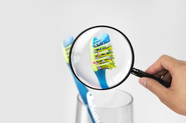 Como evitar a proliferação de bactérias no banheiro