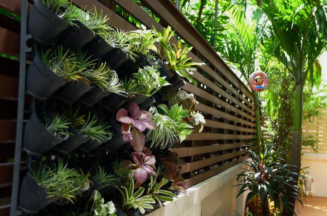 Jardim suspenso em casa