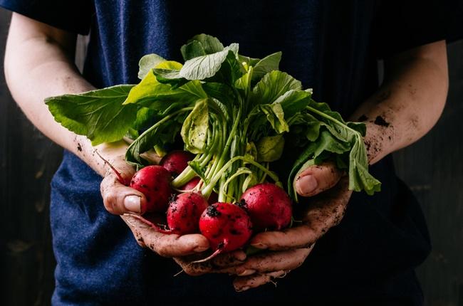 Benefícios dos alimentos orgânicos