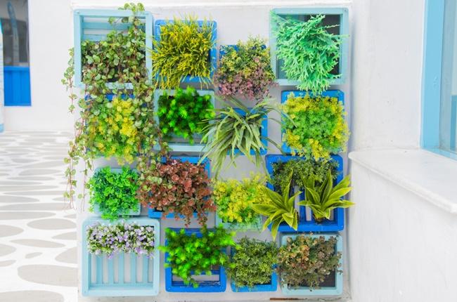 Temperos e vegetais perfeitos para uma horta vertical