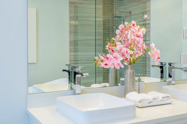 Plantas para o banheiro
