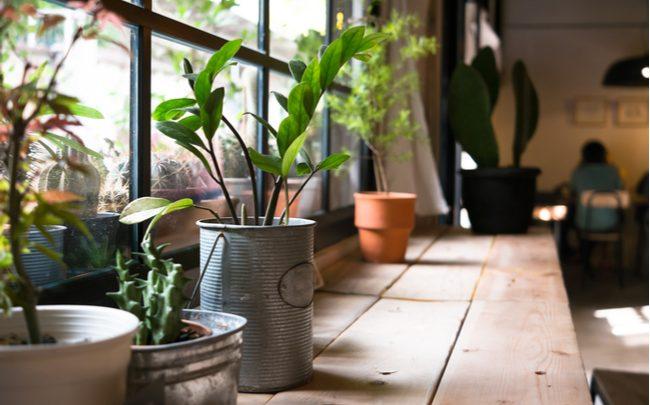 Ideias sustentáveis para organizar a cozinha - SEPAC