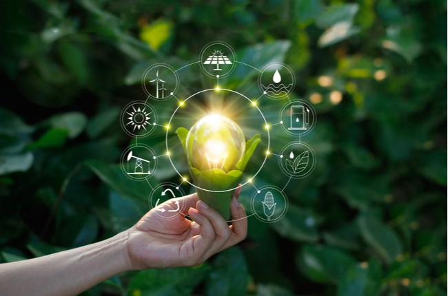 5 práticas sustentáveis para o dia a dia