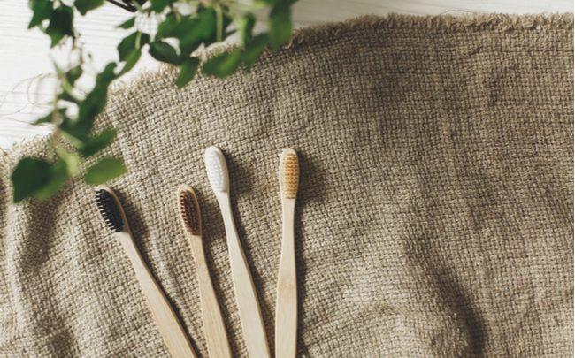 Escova de dente ecológica de bambu