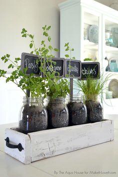 Horta_ Potes de vidro em bandeja - SEPAC