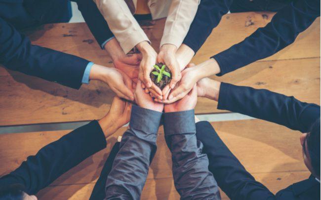 Sustentabilidade pode ser um diferencial estratégico - SEPAC