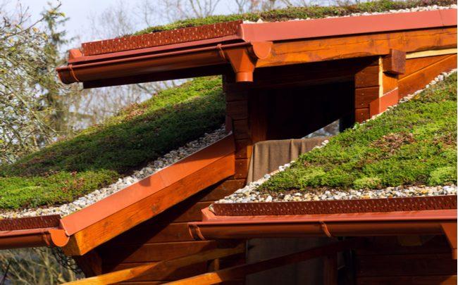 Como funciona, como fazer e os benefícios de um telhado verde - SEPAC
