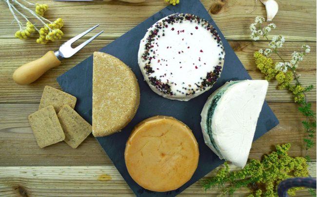 Queijos vegetais - alternativa para evitar a lactose - SEPAC