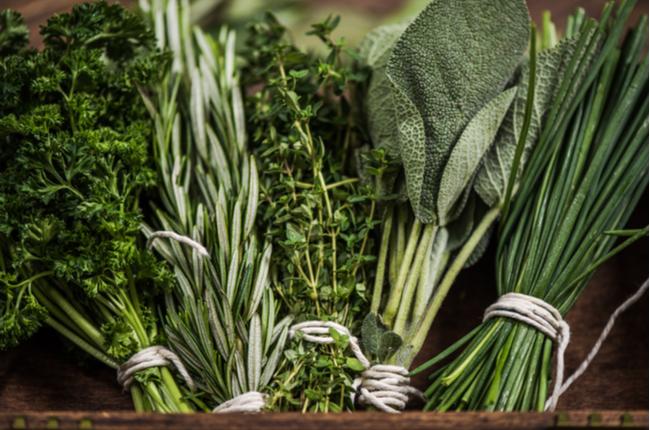 Ervas frescas ou secas: qual usar?