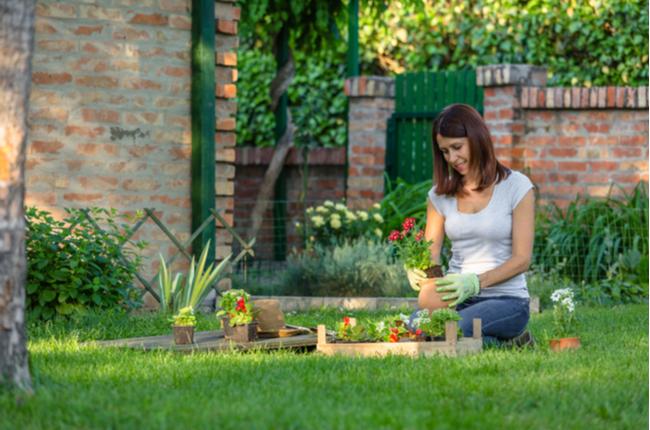 Dicas para ter um jardim bonito e bem-cuidado