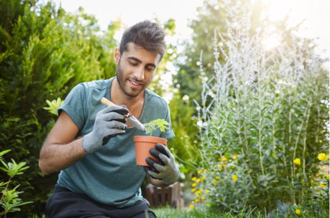 homem cultivando planta em vaso - SEPAC