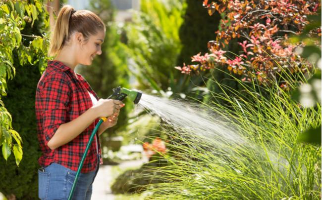 Mulher regando plantas com água da cisterna - SEPAC
