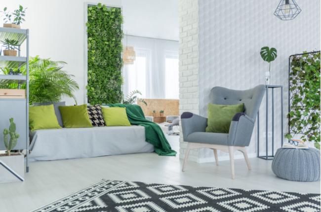 Sala decorada predominantemente em cinza e verde, com plantas e jardim vertical – SEPAC