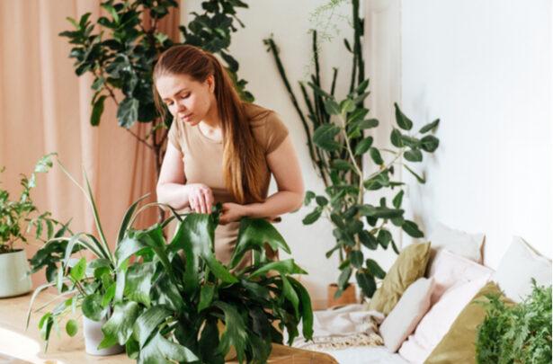 mulher cuidando de plantas em casa - SEPAC